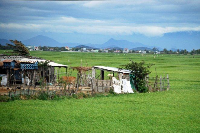 Central Vietnam, 2011 (c) Colleen Briggs