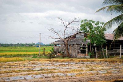 Rural Vietnam, 2011 (c) Colleen Briggs