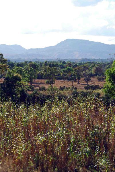 Haitian vista, (c) Colleen Briggs, 2014