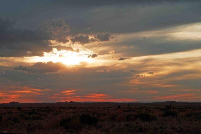 Sunset; Colleen Briggs (c) 2014